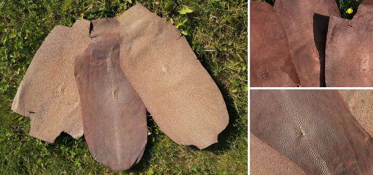 4 alte Rochen-Leder Stücke