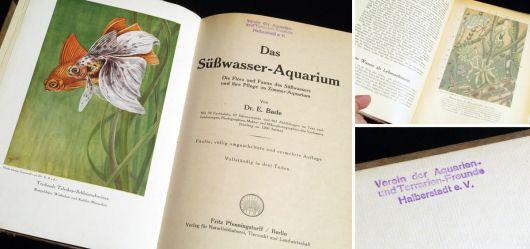 Das Süßwasser-Aquarium Erste Hälfte 20. Jahrhundert