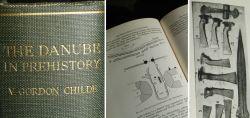 The Danube in Prehistory