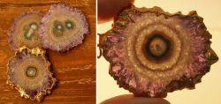 Drei Stück Amethyst